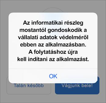 Képernyőkép, amelyen látható, hogy a szervezet védelmet nyújt az Outlook appnak