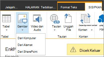 Tombol Sisipkan gambar dengan menu opsi sumber di bawahnya.