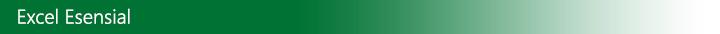 Pokok-Pokok Penting Excel