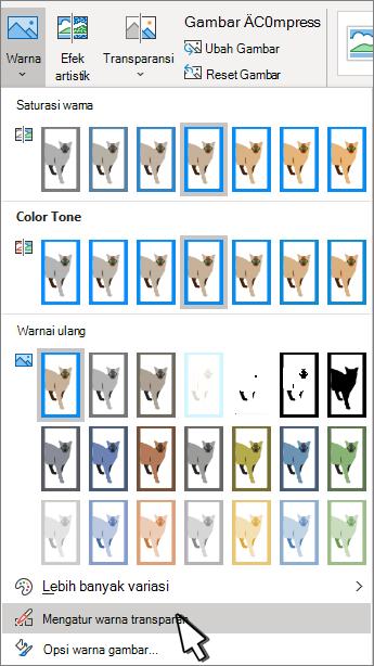 Menu warna dengan transparansi kumpulan dipilih.