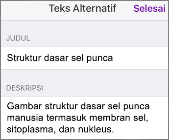Dialog teks alternatif di iPhone.
