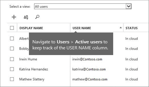 Kolom Nama Pengguna di pusat admin Office 365