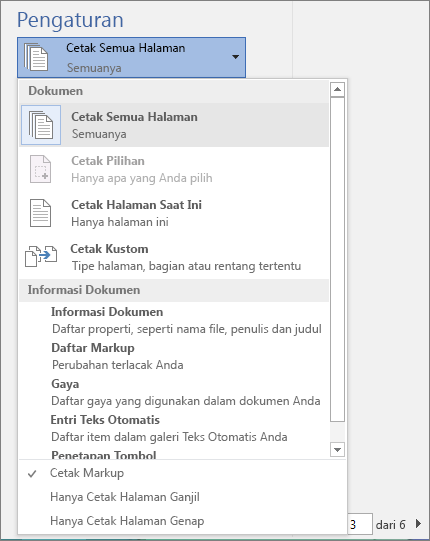 Cuplikan layar panel Cetak dengan menu Cetak Semua Halaman diperluas untuk memperlihatkan opsi tambahan.