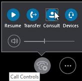 Memperlihatkan tombol berkonsultasi jendela kontrol panggilan