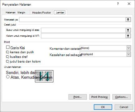 Excel Opsi tab Lembar Penyetelan Halaman