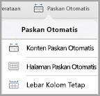 Opsi paskan otomatis iPad