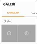 File gambar yang terenkripsi di aplikasi Galeri.