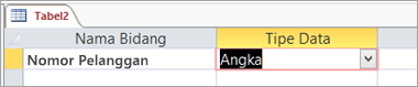 Nama bidang pertama dan tipe data dari tabel Access baru
