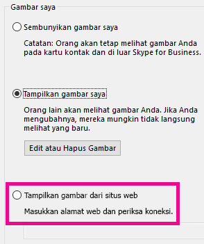 Cuplikan layar bagian dari jendela opsi gambar saya Lync dengan memilih gambar dari situs web disorot