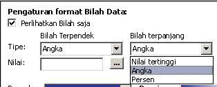 pengaturan pemformatan untuk bilah data