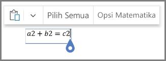 Memperlihatkan opsi matematika untuk persamaan