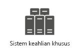 Sistem khusus