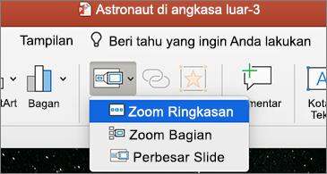 Daftar menurun Zoom dengan Zoom Ringkasan dipilih