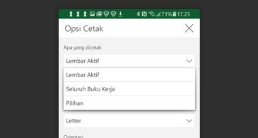 Kotak dialog Cetak dengan daftar opsi cetak yang tersedia
