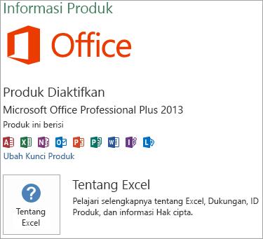 Instalasi MSI Excel