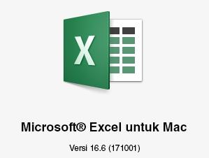 Logo Microsoft Excel untuk Mac memperlihatkan versi 16.6