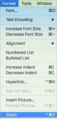Memperlihatkan memilih Zoom pada Format menu