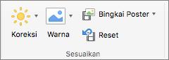Cuplikan layar memperlihatkan grup Sesuaikan pada tab Video Format dengan opsi koreksi, warna, bingkai Poster, dan Reset.