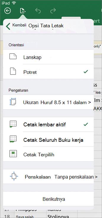 Dialog Pengaturan cetak di Excel untuk iOS memungkinkan Anda mengkonfigurasi cara lembar kerja Anda akan dicetak.