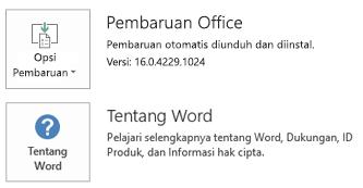 Saat Office telah diinstal dengan menggunakan teknologi Click-to-Run, aplikasi dan memperbarui informasi terlihat seperti ini.