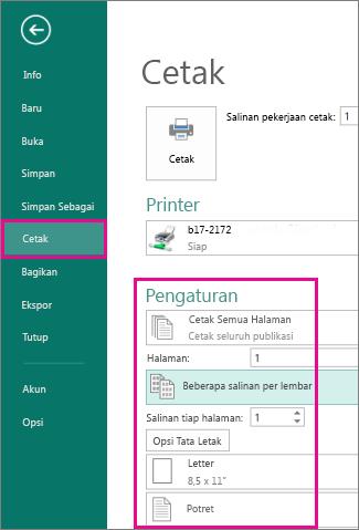 Klik File, Cetak, untuk menampilkan pengaturan untuk mencetak di Publisher 2013