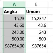 contoh bagaimana angka diperlihatkan dengan format berbeda seperti format Angka dan Umum.