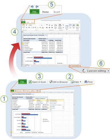 Excel Web App secara sekilas