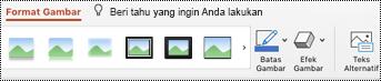 Tombol teks Alt pada pita untuk gambar di PowerPoint untuk Mac.