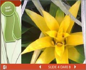 Contoh presentasi PowerPoint yang disematkan tentang pameran bunga
