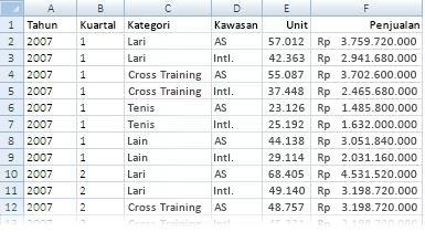 Data yang digunakan dalam laporan PivotTable
