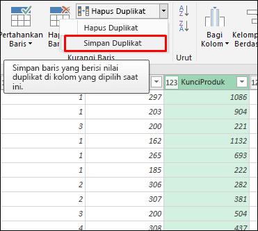 Power Query - Simpan Duplikat