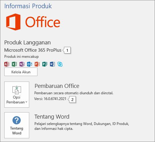 Cuplikan layar halaman Akun yang memperlihatkan nama produk Office dan nomor versi lengkap