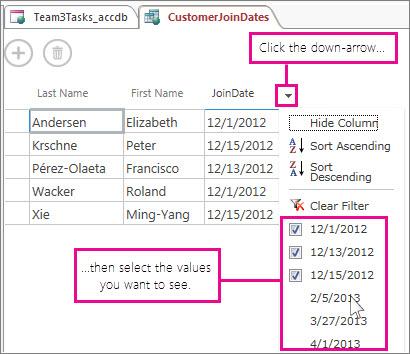 Memfilter kolom dalam kueri di aplikasi Access.