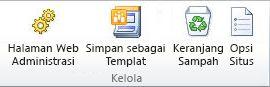 Tab Situs, grup Kelola
