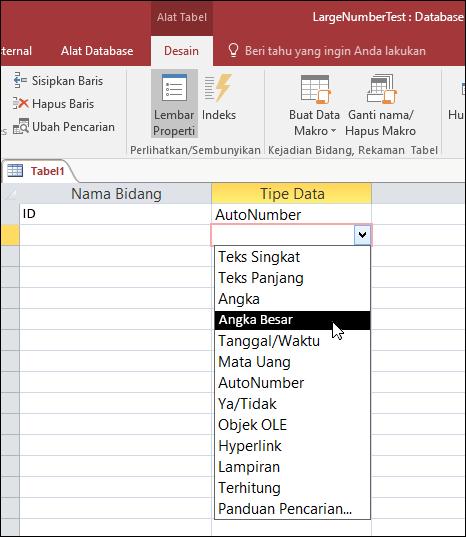 Cuplikan layar daftar tipe data dalam tabel Access. Angka besar dipilih.