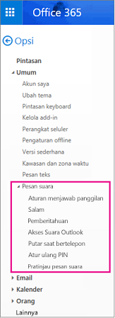 Opsi pesan suara di panel opsi email Outlook