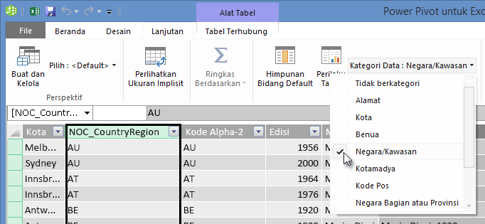 Kategori Data di PowerPivot