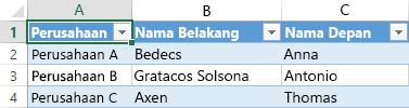 Lembar bentang Excel menampilkan tiga catatan data dalam tiga kolom