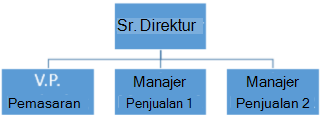Bagan organisasi sederhana