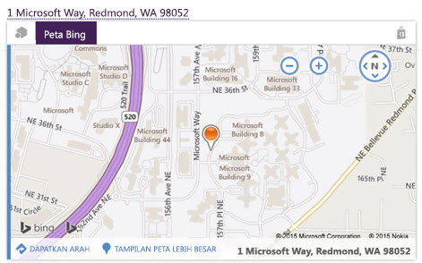 Peta Bing