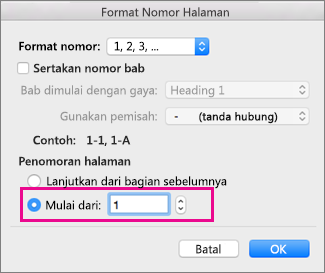 Dalam kotak format Nomor Halaman, Mulai pada = 1.