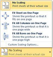 Pengaturan cetak