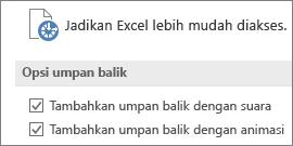 Sebagian tampilan dari Pengaturan Kemudahan Akses Excel