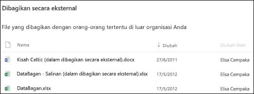 File yang dibagikan secara eksternal