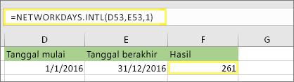= NETWORKDAYS.INTL(D53,E53,1) dan hasilnya: 261