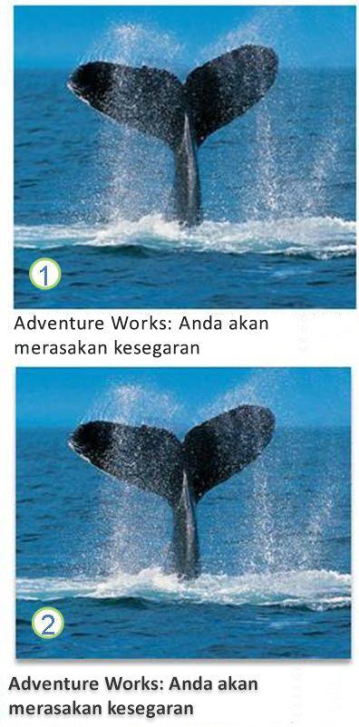 teks dan efek gambar