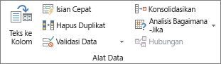 Grup Alat Data pada tab Data