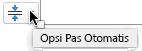 Alat opsi paskan otomatis muncul saat tempat penampung terisi dengan teks
