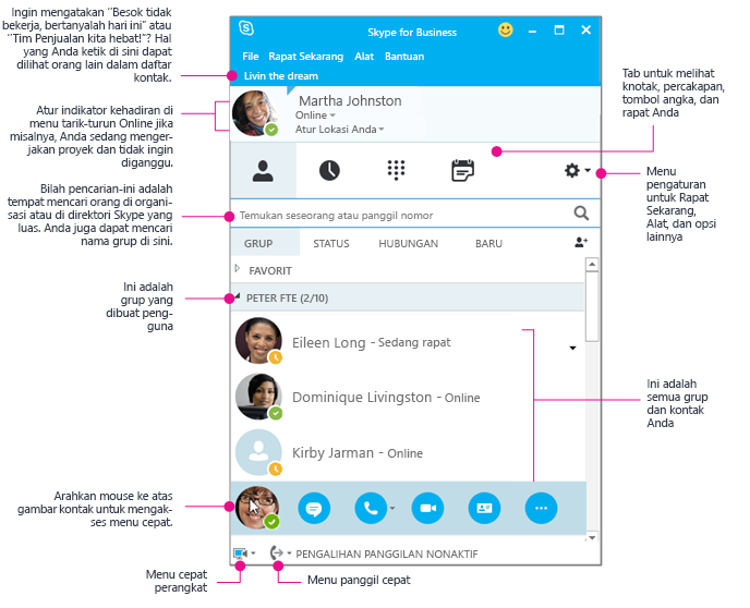 Jendela Kontak Skype for Business, berdiagram