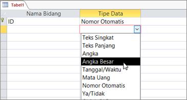 Daftar tipe data dengan Angka Besar disorot
